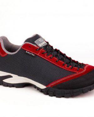 کفش جام کوهسار